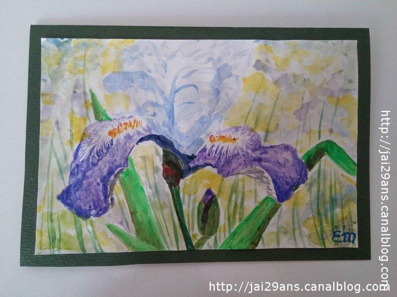 Iris_aquarelle2