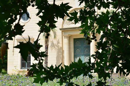 Jardin des plantes 06