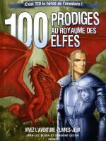 Boutique jeux de société - Pontivy - morbihan - ludis factory - Livre aventure 100 prodige au royaume des elfes