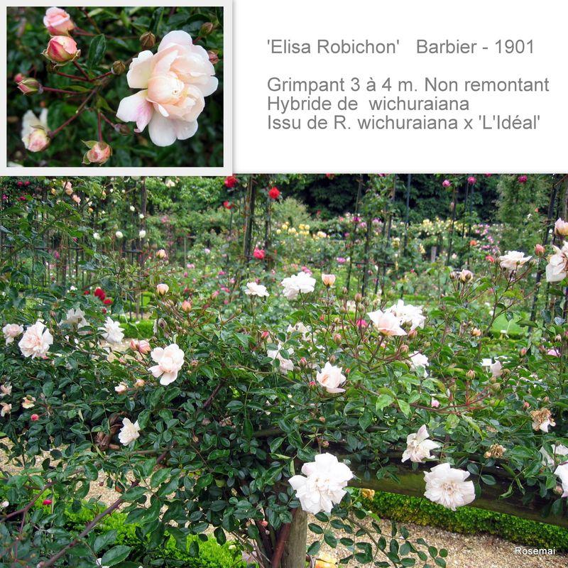 'Elisa Robichon' - Barbier (1901)