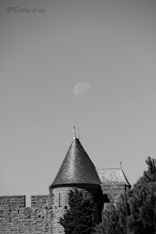 1-LuneToitCarcassonne_TortueetCie