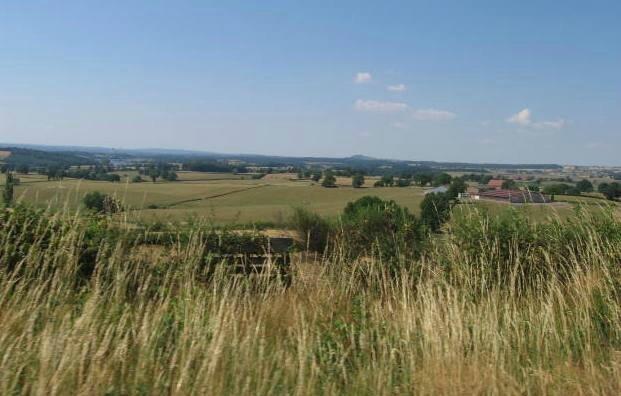 photos Bourgogne 21 juin 2014 079