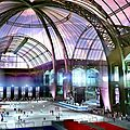Bon plan express : 50% de réduction au Grand Palais des Glaces