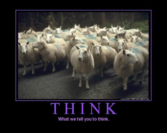like-sheeple-like-sheep