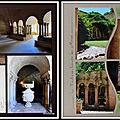 Portiragnes 2015 - abbaye de valmagne 6 - cloître et jardin du cloître