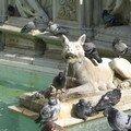 Fontaine aux pigeons sur le campo de Sienne