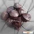 Moelleux chocolat & 5 céréales ( 169 cal/ par muffin)