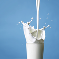 Pour ou contre le lait de vache ?