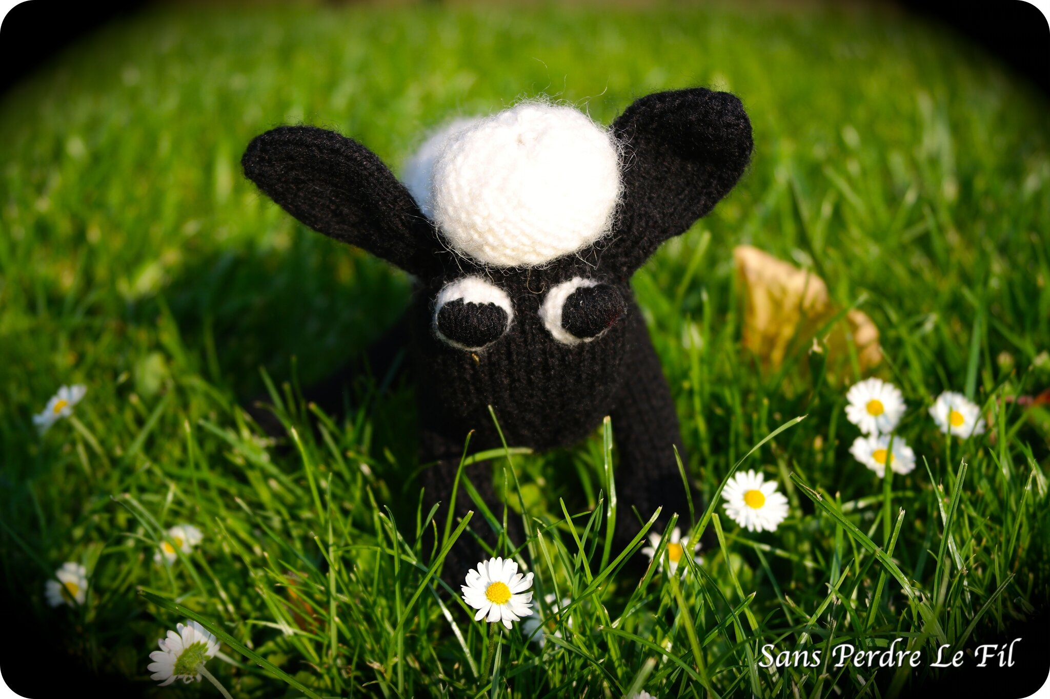 Shaun the sheep...