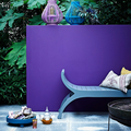 Color obsession △ purple-violet intense