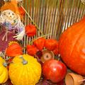 composer avec les couleurs de l'automne...