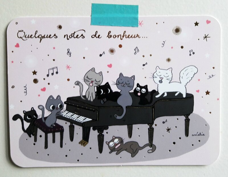 ameliebiggslaffaiteur_chats piano