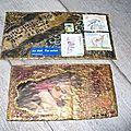 Mailart de Voiles d'oiseaux 003 (2)