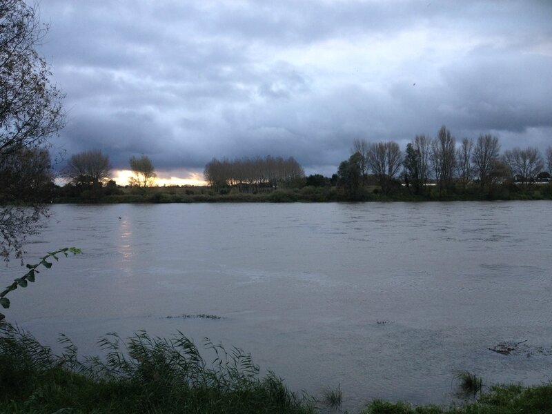 Bords de Loire 2