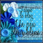 Blog Un peu fleur bleue
