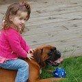 A dada sur mon cheval ... euh mon chien !