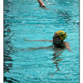 natation synchro 003 copie