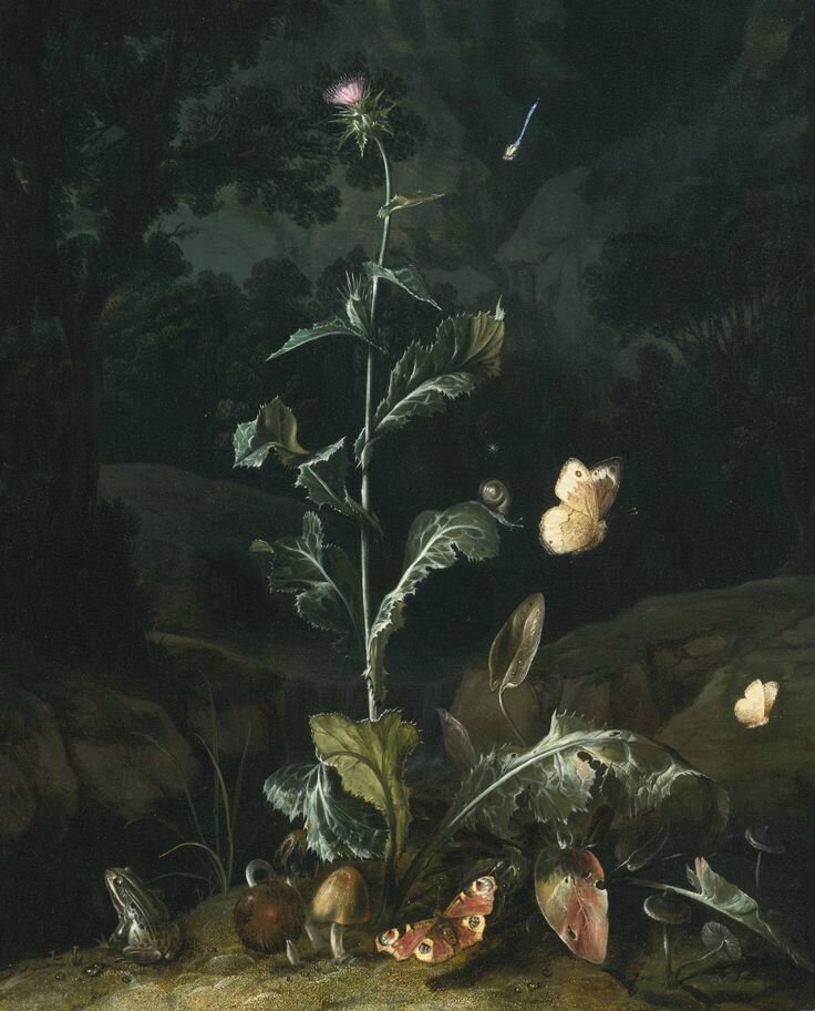 Otto Marseus van Schriek, called Snuffelaer, Nocturnal forest floor still life with a thistle, butterflies, mushrooms and a frog