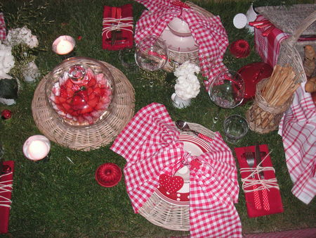 table_picnic_059