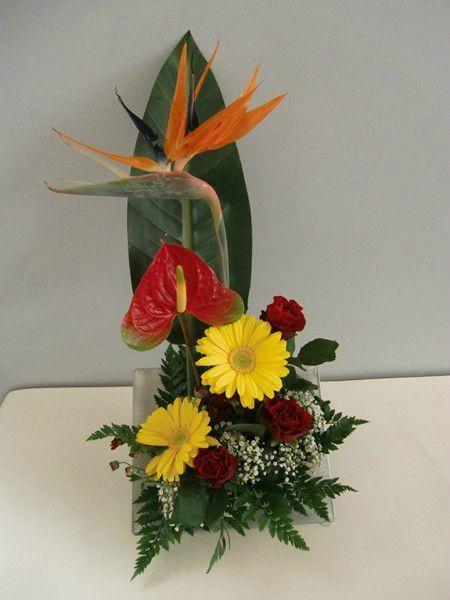 Gerberas tous les messages sur gerberas au fil des fleurs 51 pargny sur saulx for Commander fleurs sur internet