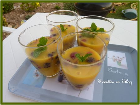 soupe_abricots_mangues_fruits_rouges3