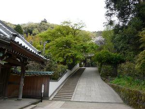 Canalblog_Tokyo03_14_Avril_2010_044