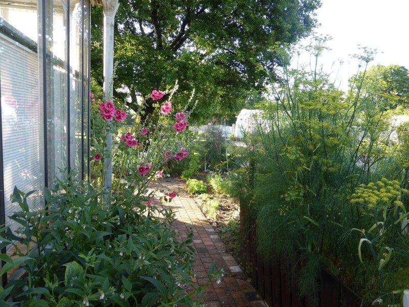 30-jardin (7)