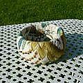 Bracelet tissu brodé