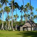 Cocoteraie Camping de Tiakan