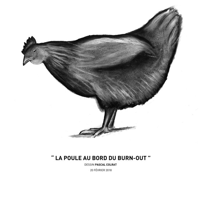 __la_poule_au_bord_du_burn_out__