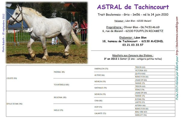 Astral_de_Tachincourt