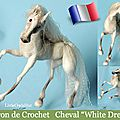 Dans la famille littleowlshut patterns, le cheval blanc !