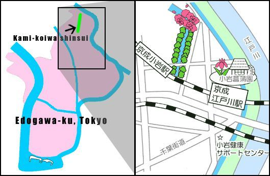 Kami_koiwa_shinsui-map