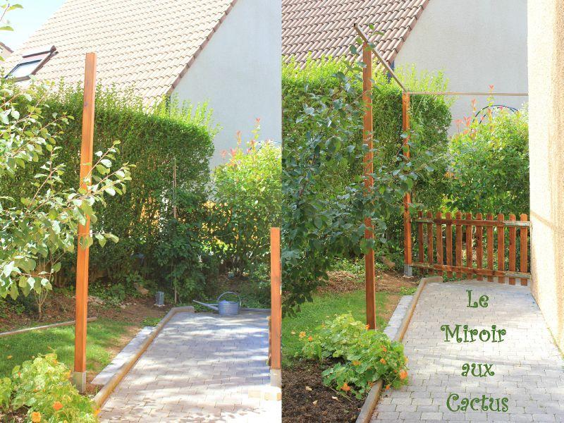 3 poteaux 2 barres 1 barri re on avance le miroir aux cactus. Black Bedroom Furniture Sets. Home Design Ideas