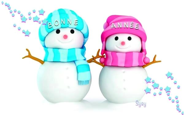 bonne-annee_029