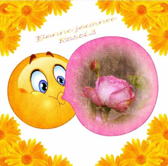 Rose63 de mon jardin
