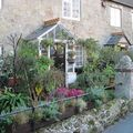 Niton (Isle of Wight) - Entrée de cottage bien fleurie
