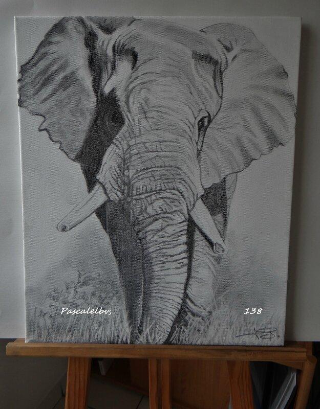 138 L'éléphant sur toile