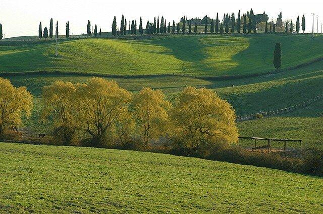 paysage toscane