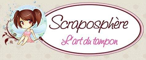scraposphere-logo-1479717207