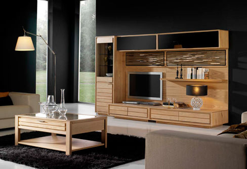 salon meuble tv composition 1 photo de clorofil meubles et d coration cologiques. Black Bedroom Furniture Sets. Home Design Ideas