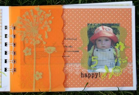 mini_album_star_du_jardin_005