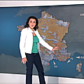 patriciacharbonnier01.2015_03_16_telematinFRANCE2