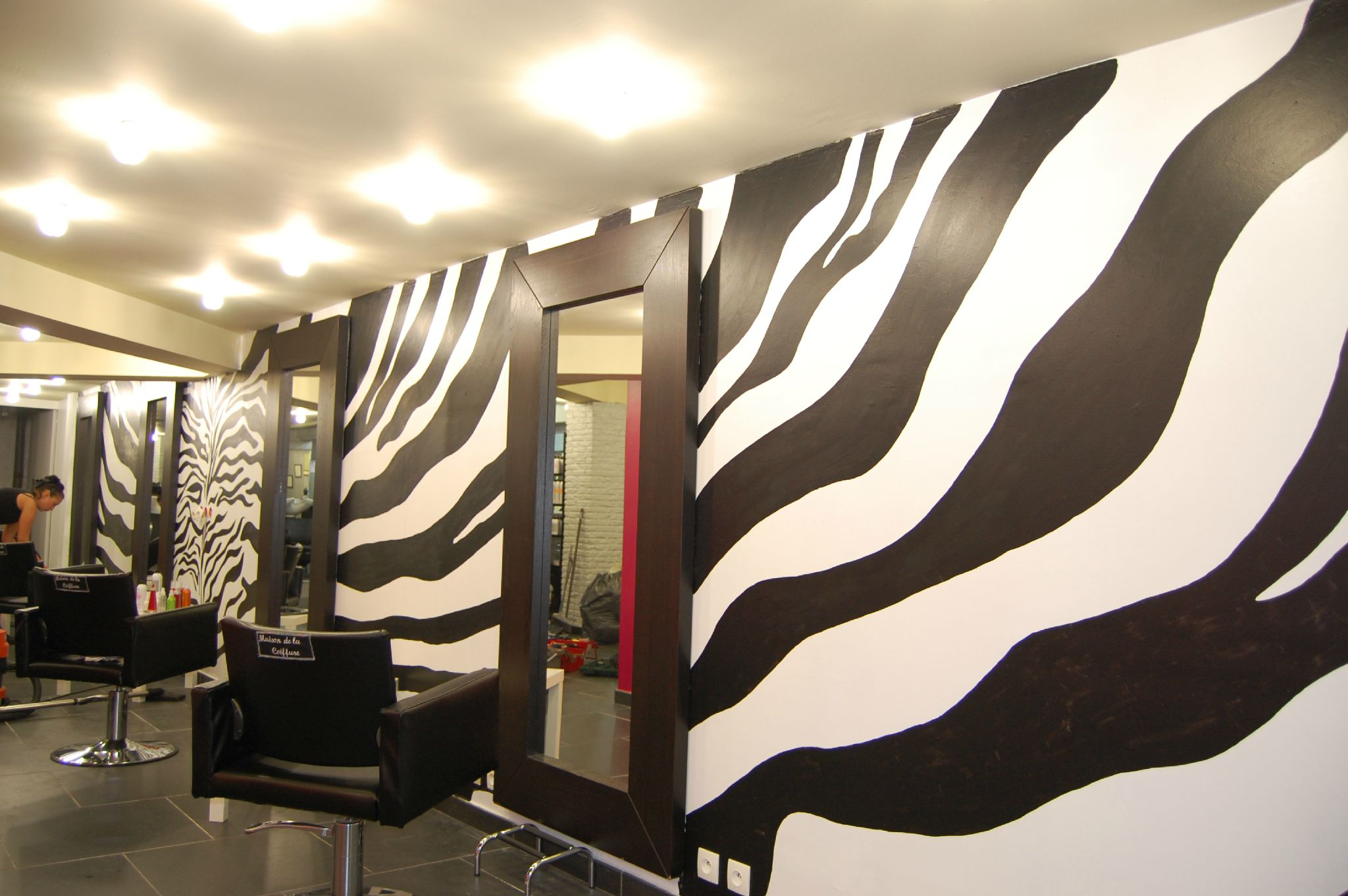 D coration salon zebre for Decoration zebre
