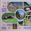 chalets et flore des Alpes en été 2 004