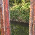 Roanne canal - 27/10/2009