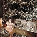 Windows-Live-Writer/Christmas-tree_1116B/DSCN3606