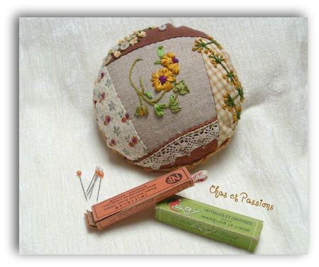 pincushion marguerite