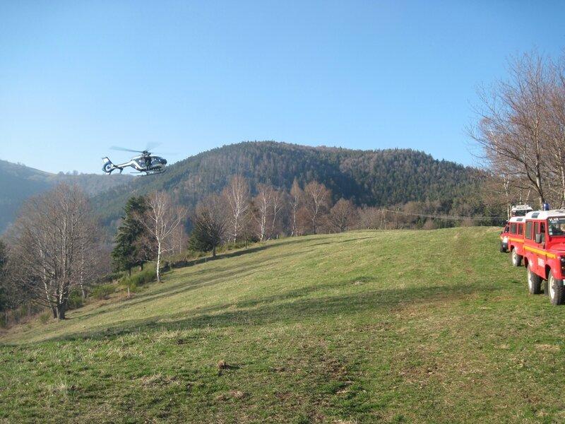 Feu de forêt 028