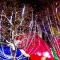 Illuminations sur les champs Elyses